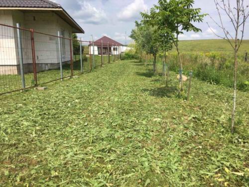 Пример покоса травы в Семково. Фото ПОСЛЕ.